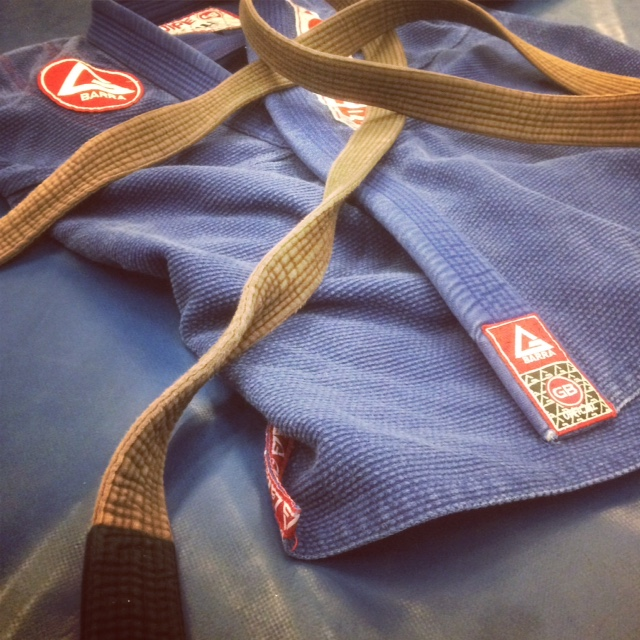 My Journey from Brown to Black Belt